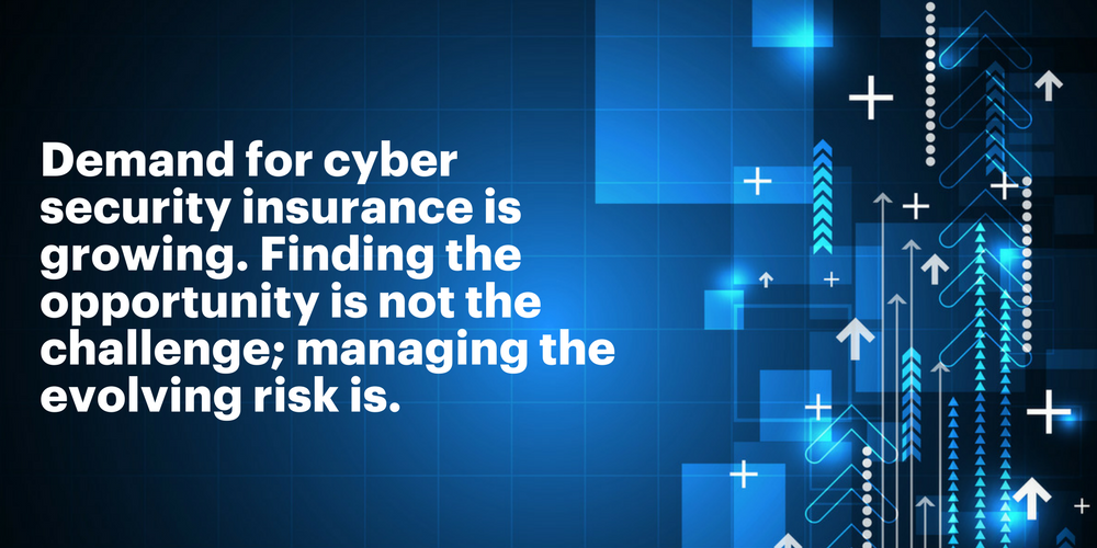 Demand for cyber security insurance is growing. Finding the opportunity is not the challenge; managing the evolving risk is.